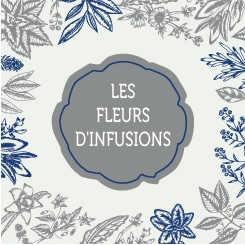 FLEURS-INFUSIONS-IMAGE-REDIRECTION
